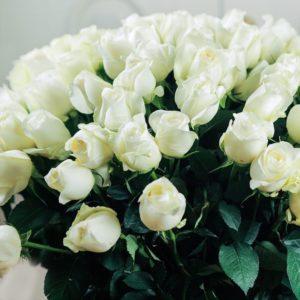 Букет 101 белая роза 70см сорт Прауд (Proud)