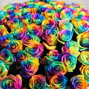 Букет 101 радужная роза в упаковке с атласной лентой
