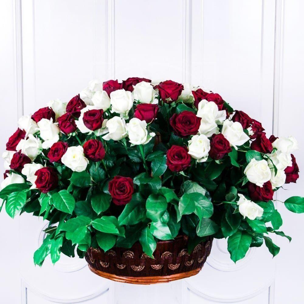 Корзина цветов 101 роза красная и белая