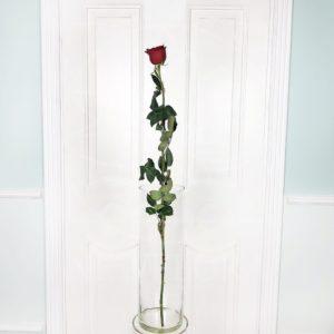Красные розы высотой 110см поштучно