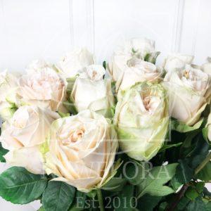 Букет 15 пионовидных роз Garden Spirit