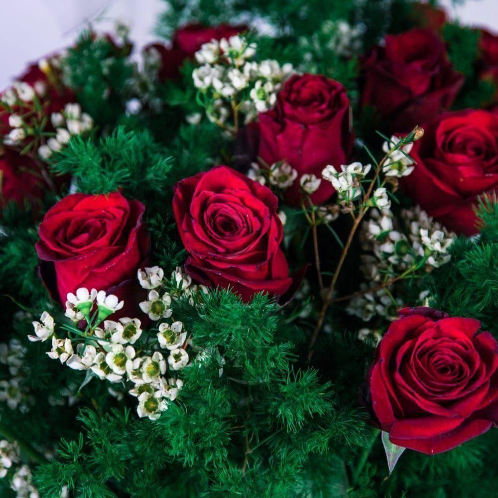 Букет 15 красных роз с зеленью