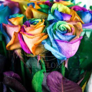 Букет 15 радужных роз