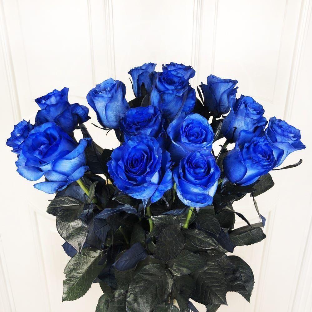 Букет 15 синих роз (Premium)