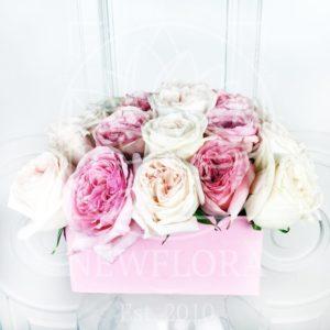 19 пионовидных ароматных роз в коробке