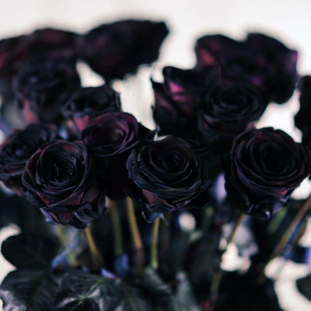 Букет 21 черная роза