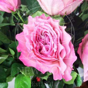 Букет 21 розовая пионовидная роза Mayra Pink