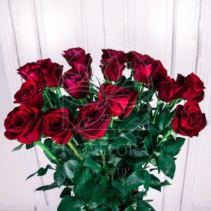 Букет 25 красных роз высотой 130см
