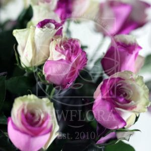 Букет 25 бело-розовых роз (Premium)