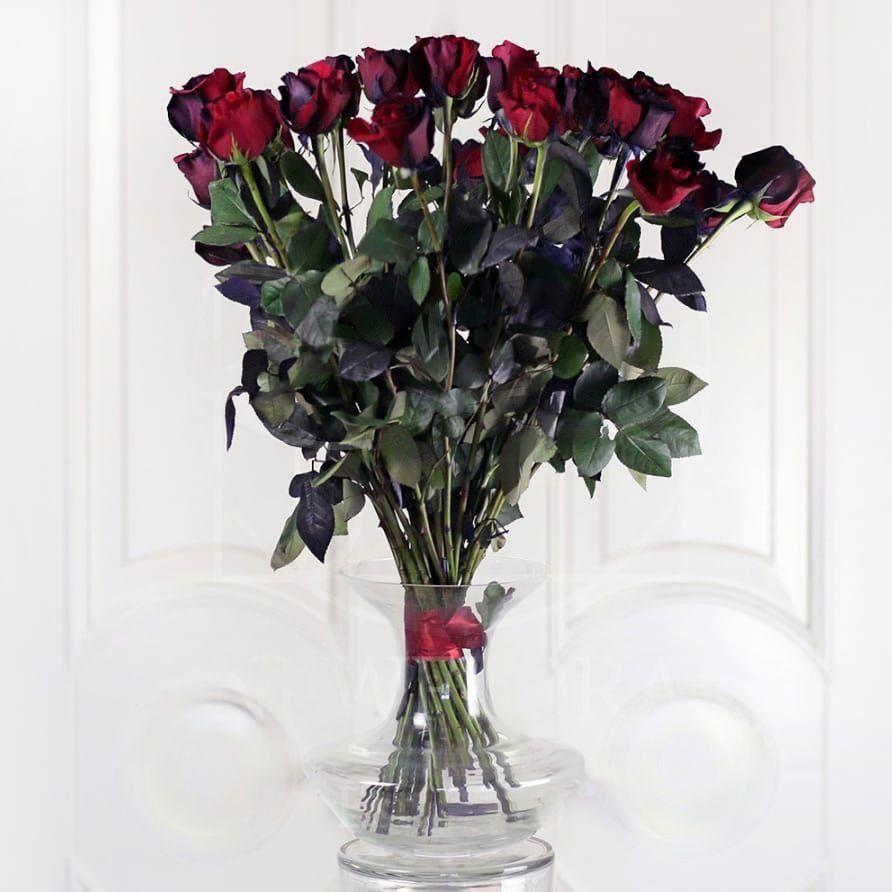 Букет 25 черно-красных роз (Premium)
