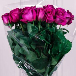 Букет 25 розовых роз 60см сорт Pink Floyd