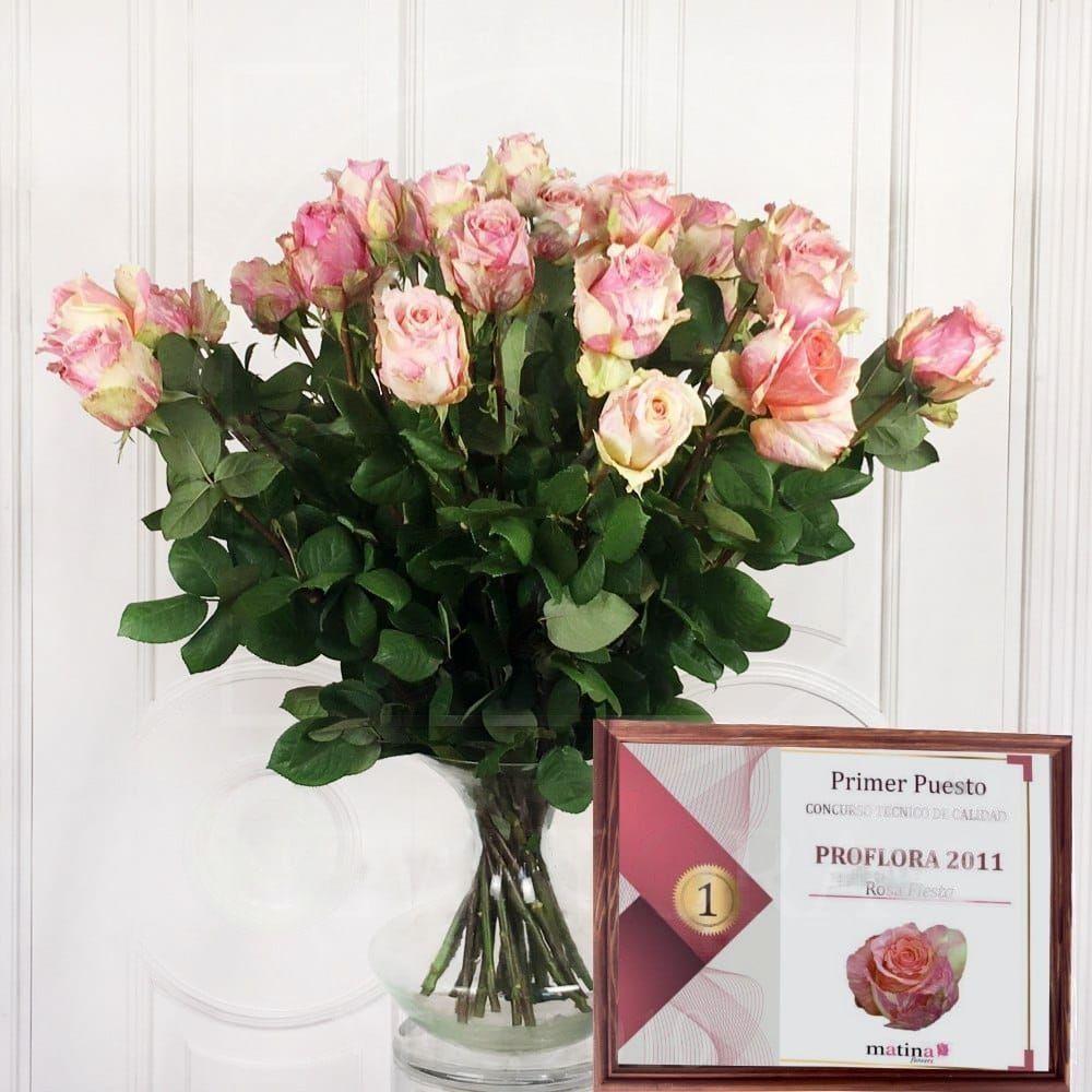 Букет 25 розовых роз Fiesta (Premium)