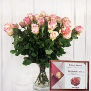 Премиум розы — лауреаты цветочных премий
