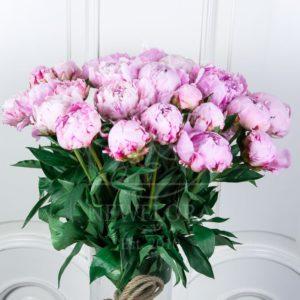 Букет 25 розовых пионов