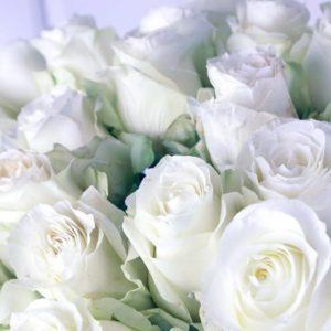 Букет 25 белых роз 60см сорт Полар Стар (Polar Star)