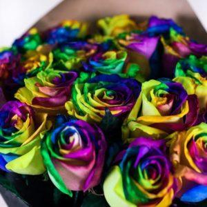 Букет 25 радужных роз (Premium) в черной бумаге с лентой