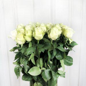 Букет 25 белых роз высотой 100см