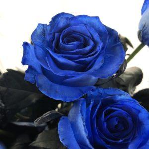 Букет 25 синих роз (Premium)