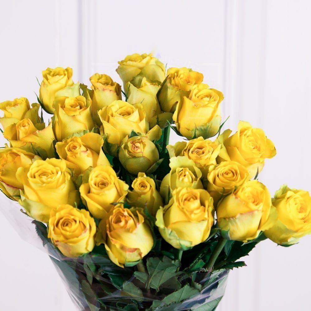 Букет 25 желтых роз 60см