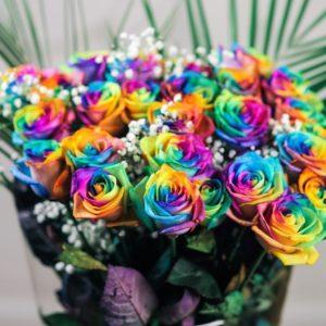 Букет 27 радужных роз с зеленью
