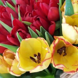 Огромная корзина цветов сердце 301 тюльпан (микс) 80×80 см