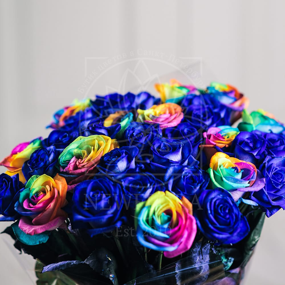 Букет 31 роза синяя и радужная