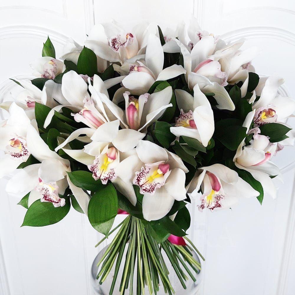 Букеты бабаевский, букет из красных орхидей купить