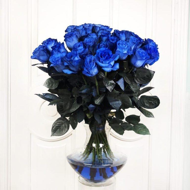 Букеты из синие розы в киев поштучно — photo 12