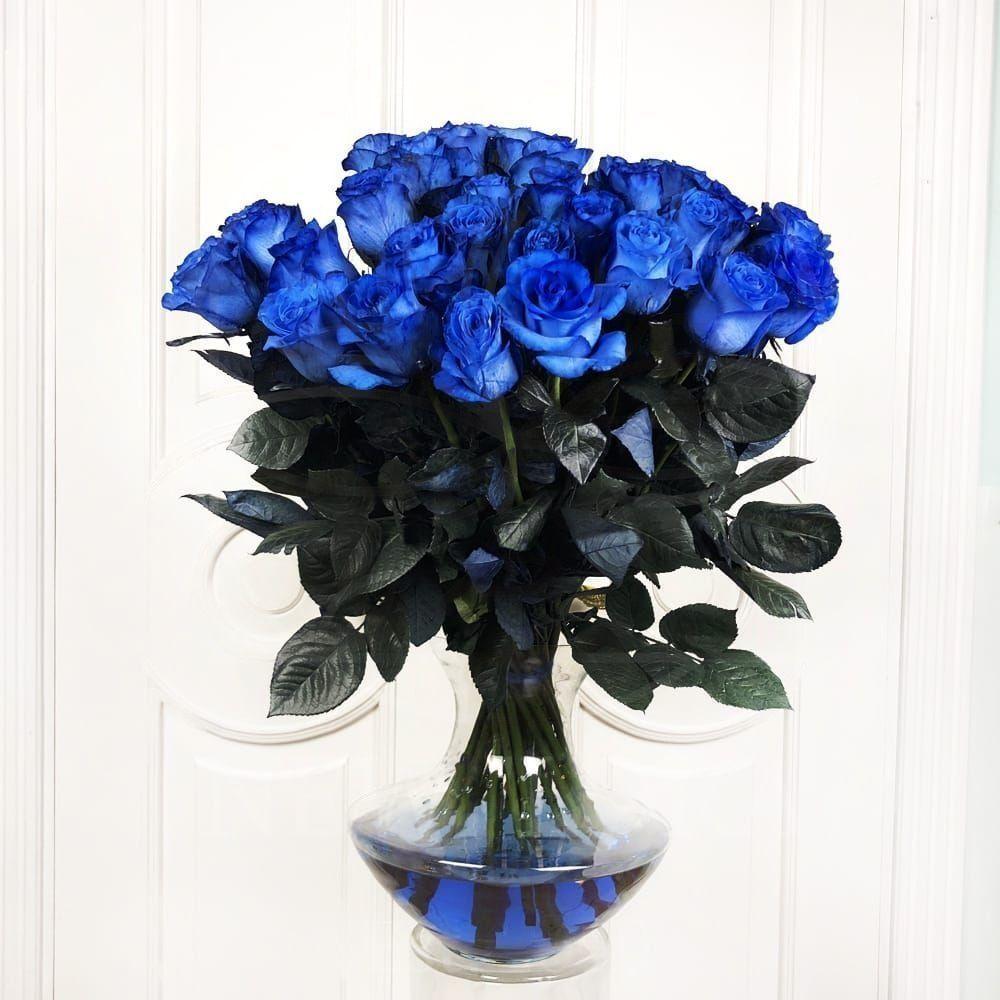 Букет 35 синих роз (Premium)