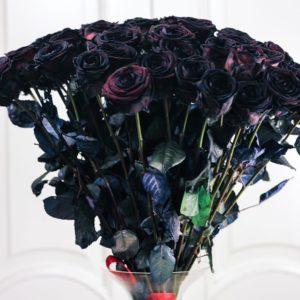 Букет 39 черных роз