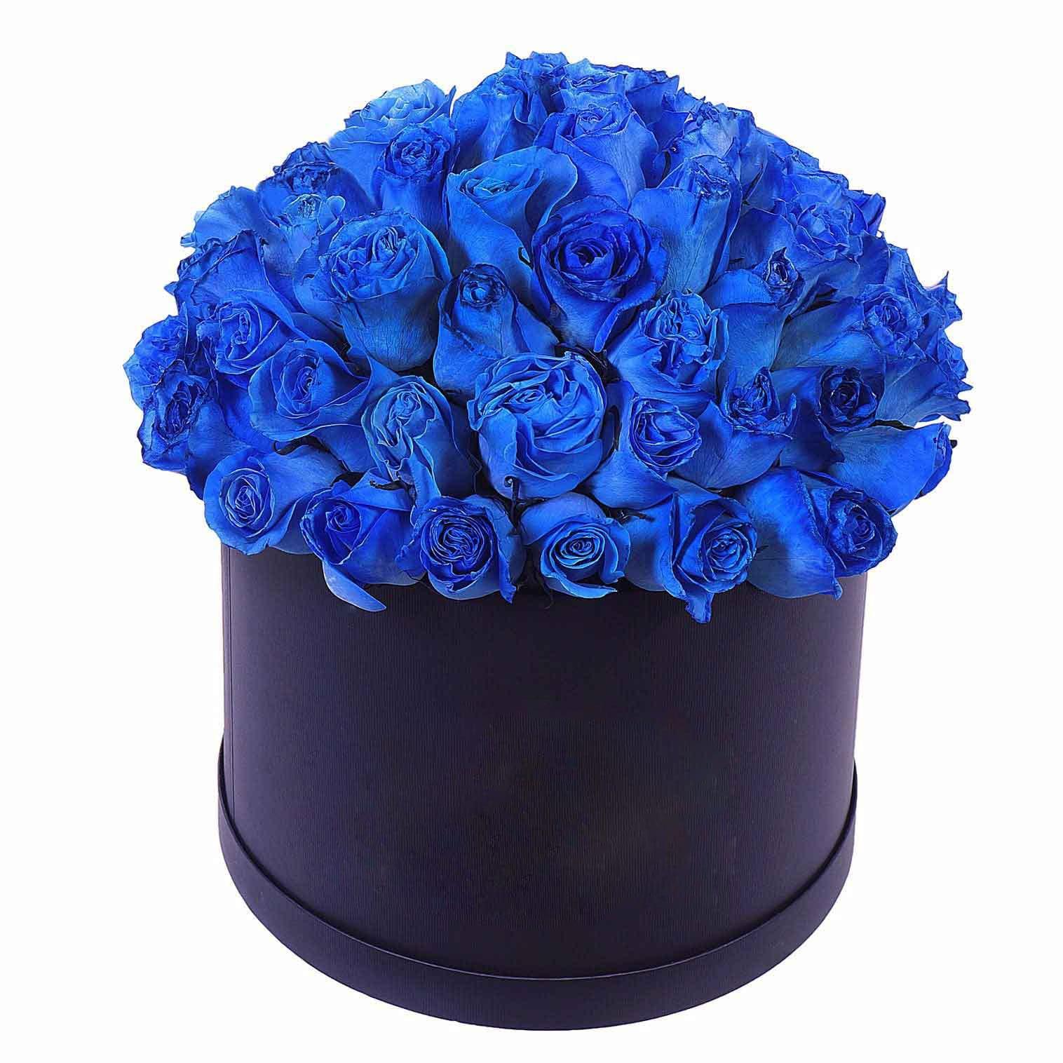Картинки с синими розами
