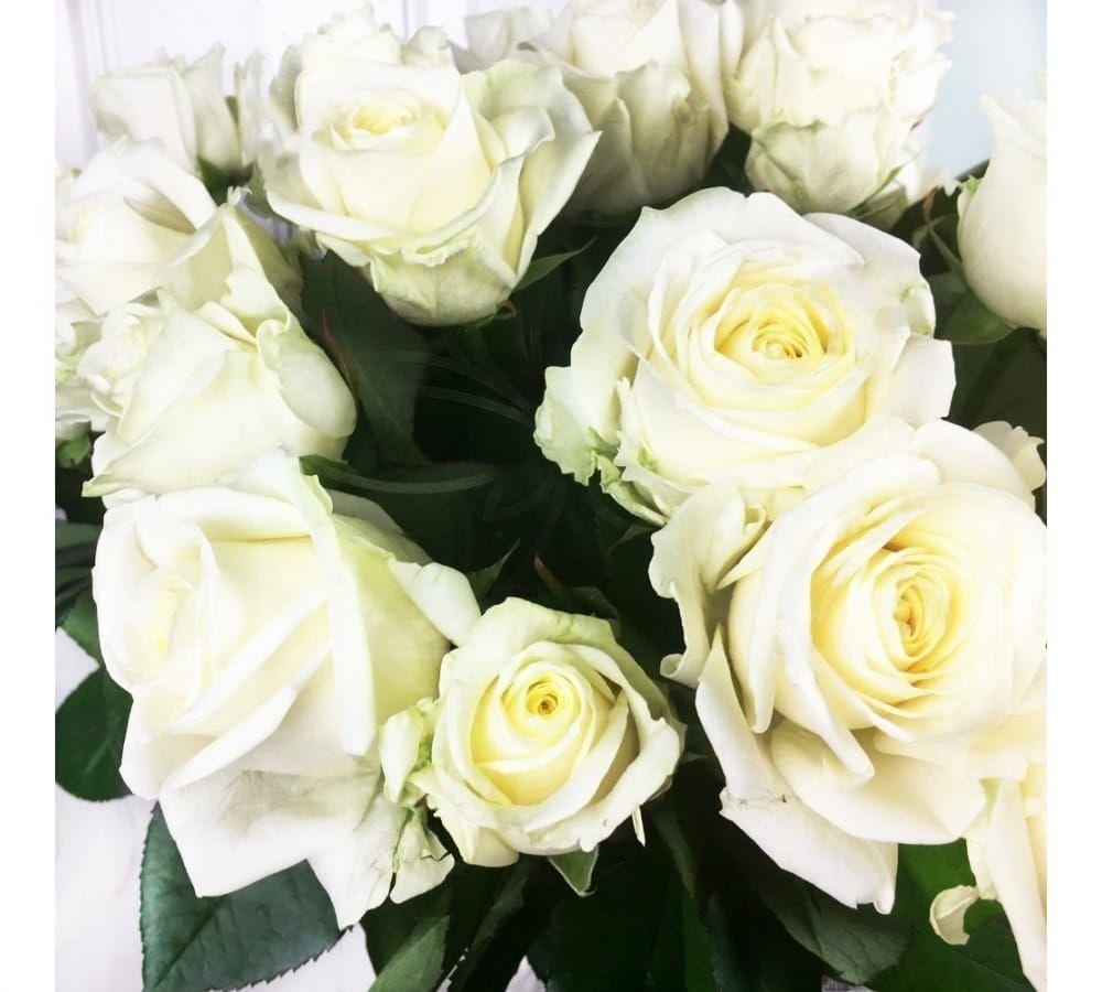 Букет 51 белая роза 50см (Голландия)