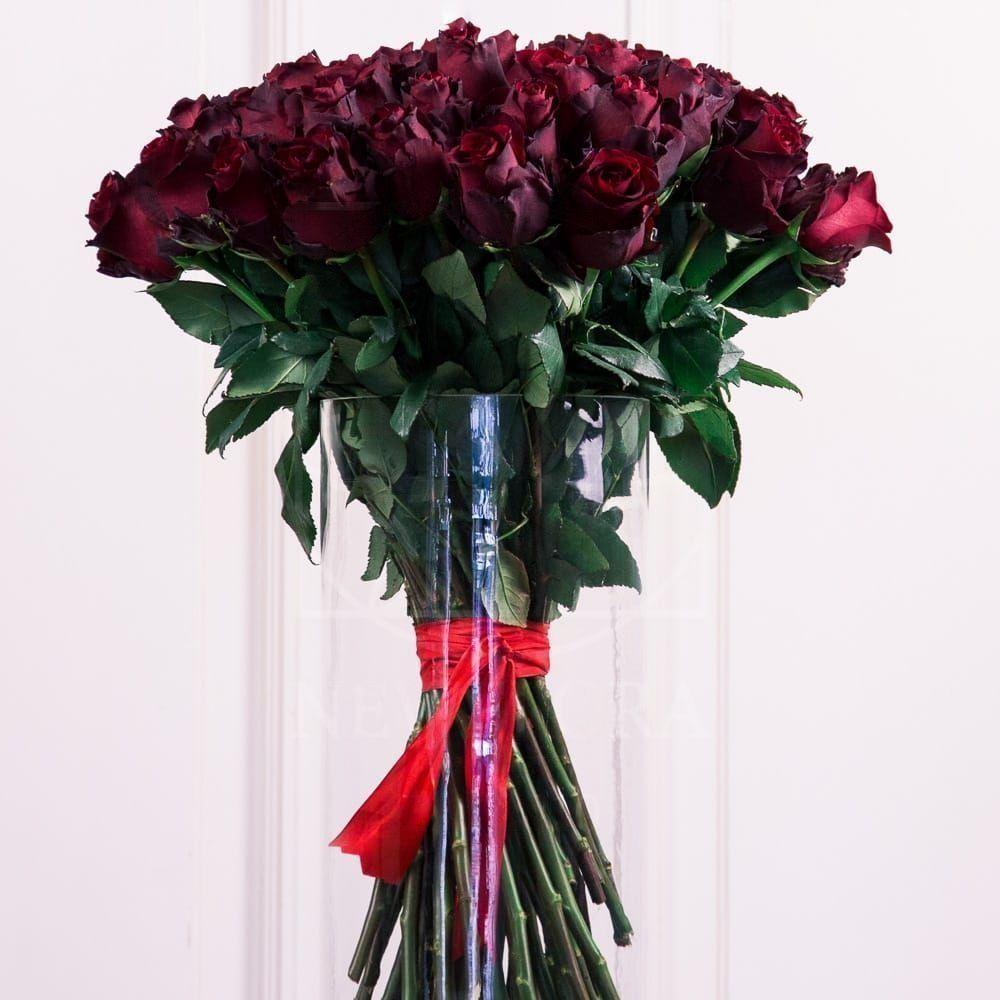 Букет 51 бордовая роза с крупным бутоном высота 60см (Explorer)