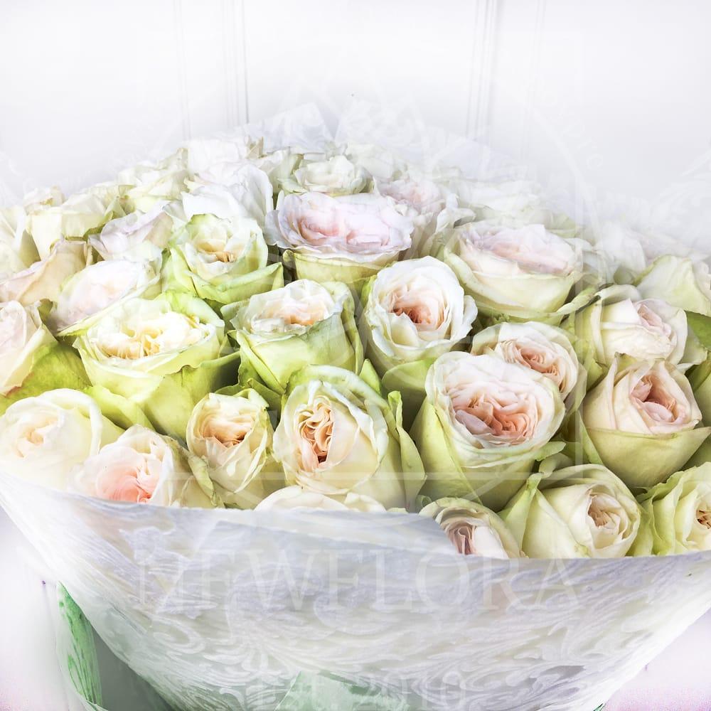 Букет 51 пионовидная роза White Ohara