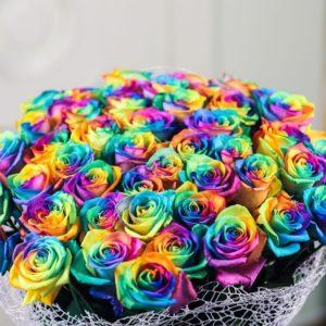 Букет 51 радужная роза в упаковке с атласной лентой