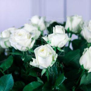 Корзина цветов 51 белая роза