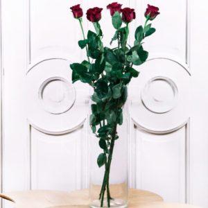 Букет 5 красных роз высотой 100см