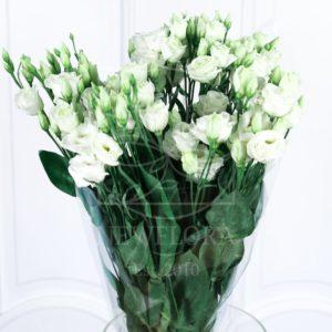 Букет 7 белых лизиантусов (эустомы)