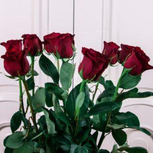 Букет 9 красных роз высотой 100см