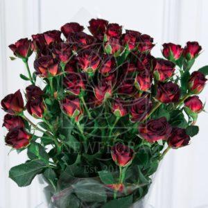 Букет 9 кустовых шоколадных роз