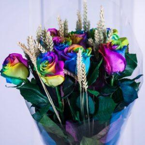 Букет 9 радужных роз с рожью (Premium)