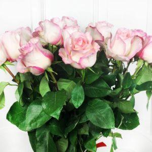 Букет 21 розовая роза с огромным бутоном «Boulevard»
