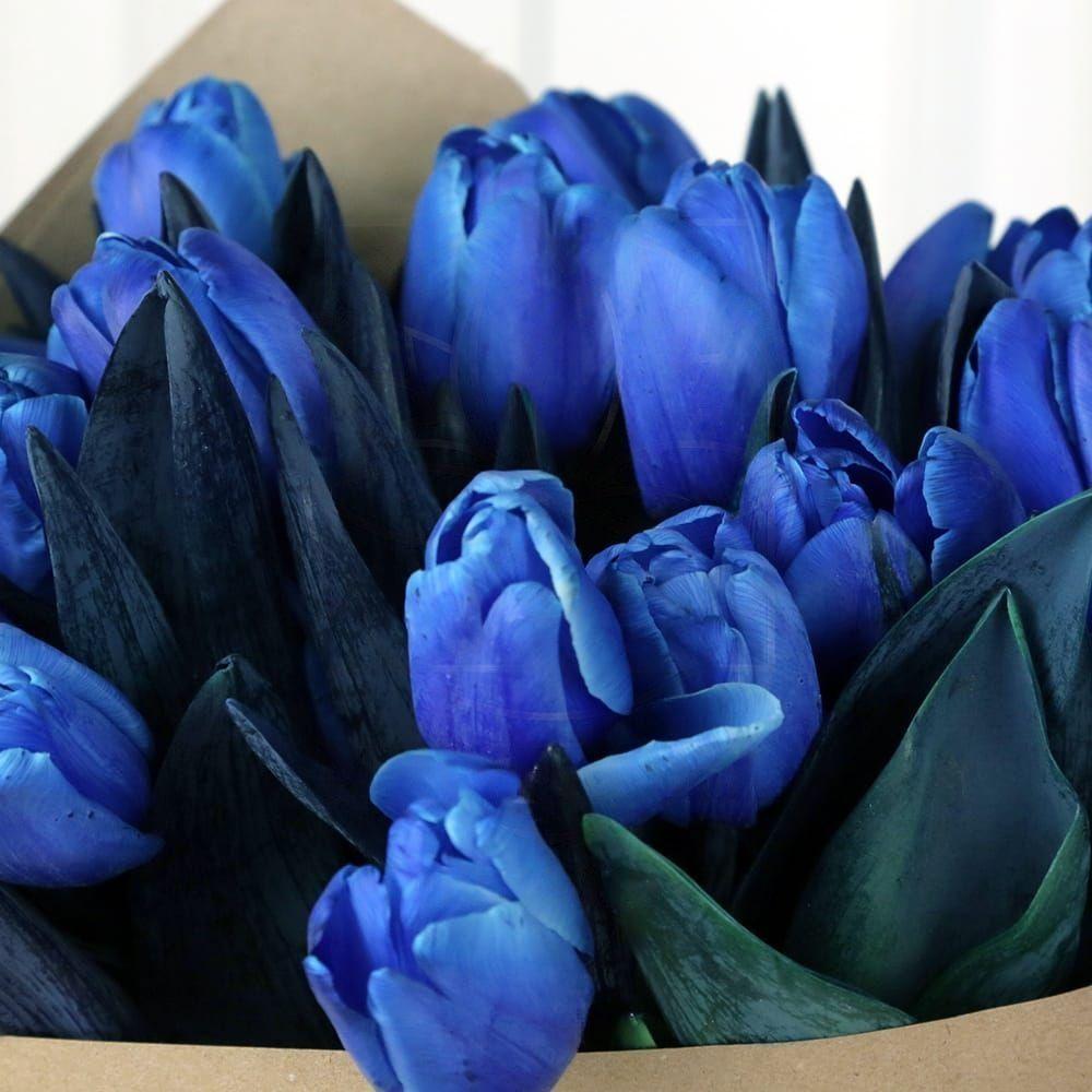 Букет 25 синих тюльпанов в крафт-бумаге