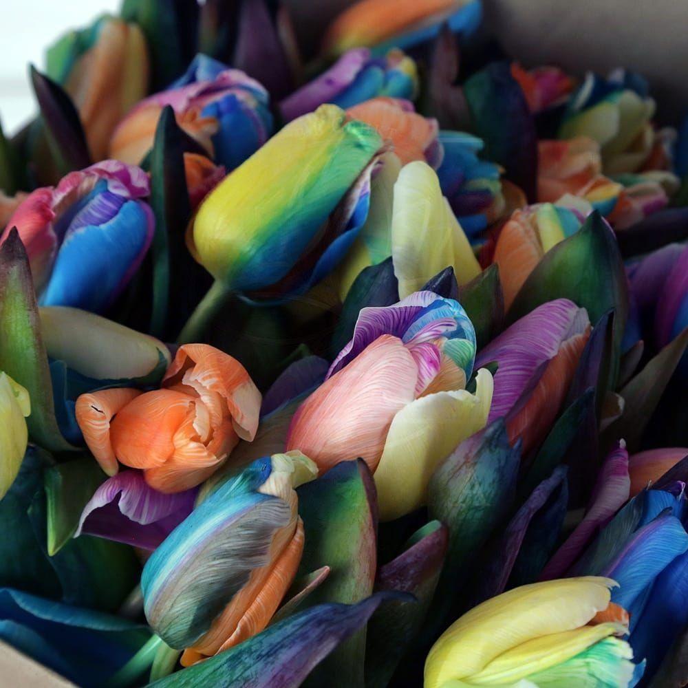 Букет 51 радужный тюльпан в крафт-бумаге