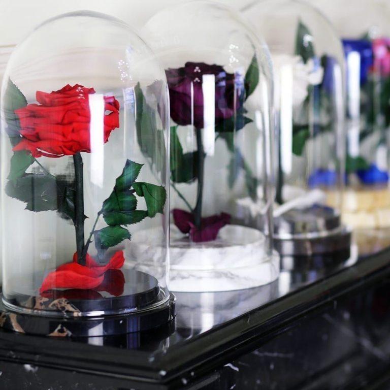 Цветов векторе заказать цветы с доставкой на дом в санкт-петербурге цветы