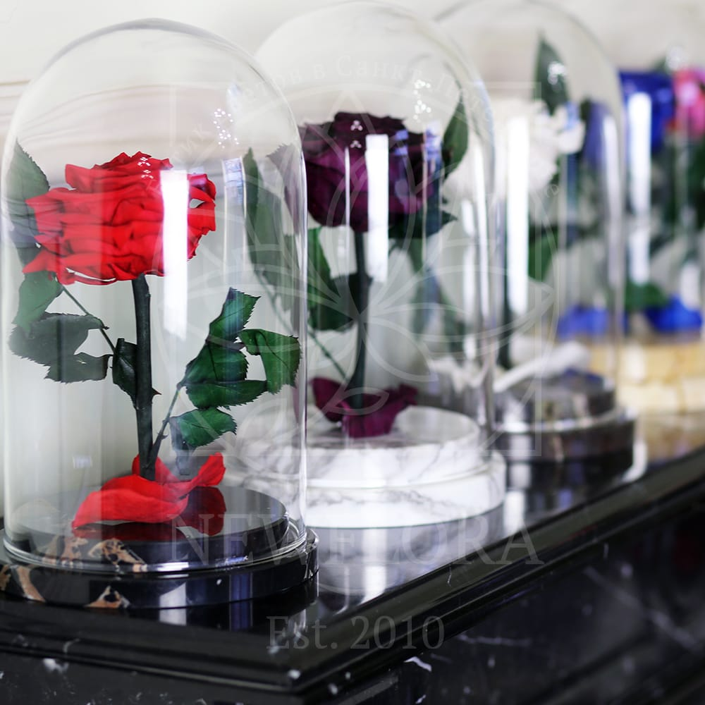 Стабилизированная роза в колбе на мраморной подставке (цвет на выбор)