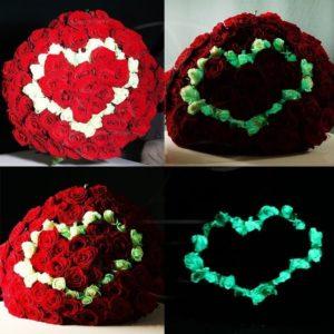 Букет сердце 81 роза светящиеся в темноте