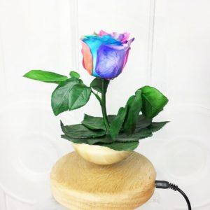 Левитирующий горшок со стабилизированной розой