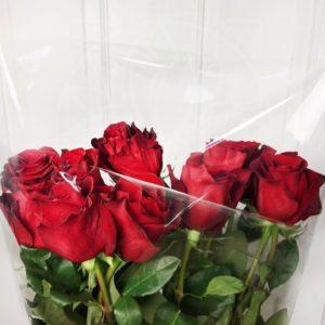 Букет 11 красных роз высотой 150см