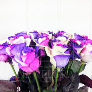 Букет 19 роз Европолис